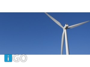 Uniek project: Walnotenbomen op boerenland rond windpark Krammer