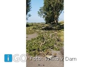 Diverse stormschades op oostelijk deel Goeree-Overflakkee