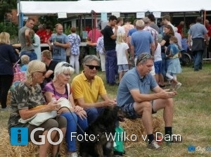 Video en foto's van geslaagde Oldtimer- en Trekkerdag te Goedereede