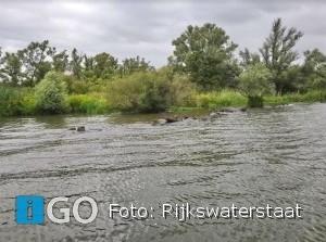 Natuurvriendelijke oevers, vogeleilandjes en visbossen in Haringvliet en Hollandsch Diep