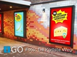 De Kortste Weg: hoe keuze lokale producten mooi landschap in Zuid-Holland oplevert