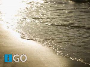 Ruim 120 ondertekenaars keren zich massaal tegen zout Volkerak-Zoommeer