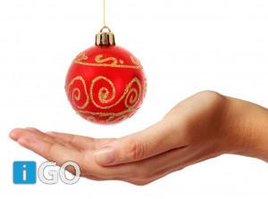 Grandioze Kerstbingo bij P.V de Zwaluw Ooltgensplaat
