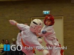 Ned. Kampioenschap en Budokai Senshi Indonesie