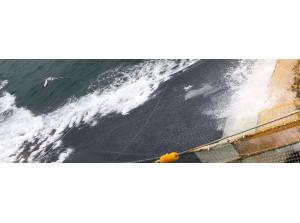 Nederlandse Vissersbond:Ontwikkelingen aanlandplicht