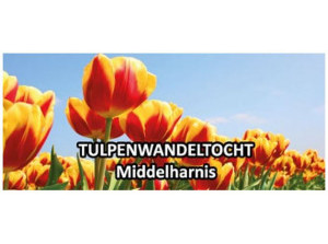 9e Tulpenwandeltocht afgelast