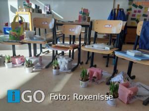 Basisschool Roxenisse brengt de lente in huis