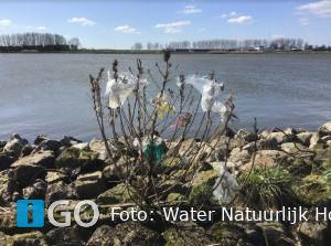 Water Natuurlijk Hollandse Delta: pak zwerfvuil aan!