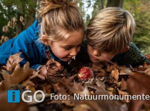 Natuurmonumenten: geen excursies, wel tips Herfstvakantie