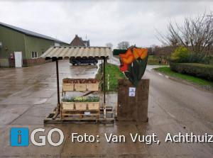 'Zeg het met tulpen' van Tuinderij Van Vugt Achthuizen