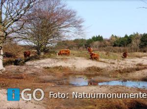 Wees welkom én respectvol in natuur regio Goeree-Overflakkee