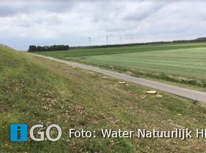 Nieuwe bomen voor Zuiderlandsezeedijk Oude-Tonge?