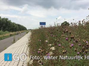 Water Natuurlijk overtuigd van belang dijken voor biodiversiteit