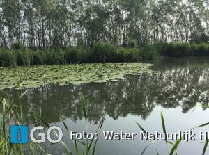 Waterschap Hollandse Delta wordt groener