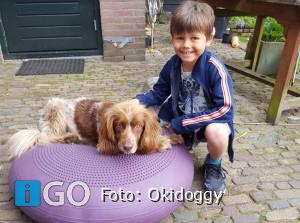 Lokale ondernemers delen hun verhaal (16) Hondenschool Okidoggy