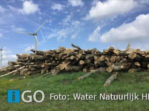 Herplant bomen Zuiderlandsezeedijk Oude-Tonge in zicht