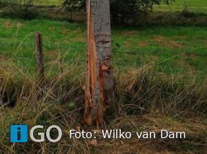 Melding auto tegen boom Schenkeldijk Melissant