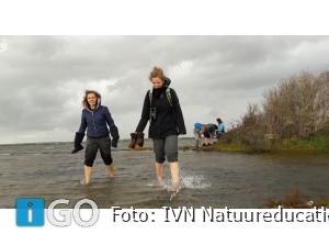 Grevelingenweek: Activiteiten in de natuur voor jong en oud