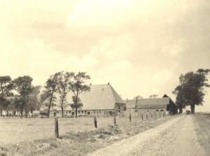 Genealogisch Centrum 25 jaar: Historische markt in Middelharnis