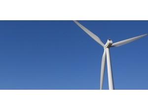 Onderzoek randvoorwaarden windpark Piet de Wit vastgesteld