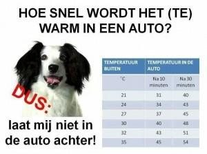 Let op: laat geen kinderen of huisdieren achter in auto