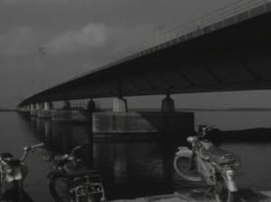50 jaar Haringvlietbrug 1964-2014