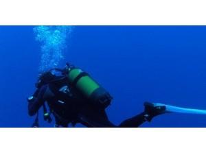 Het Grevelingenmeer: een uniek natuurgebied in de steigers