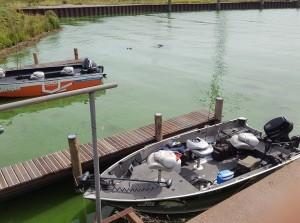 Waterschap plaatst noodpompen om blauwalg te weren