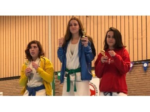 Goud zilver en brons voor Budokai Senshi op Ned. Kampioenschap