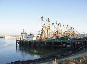 Douane roept vissers op zich voor te bereiden op de Brexit