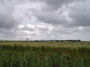 Herdenkingsconcert Watersnoodramp Herv. Kerk Stellendam