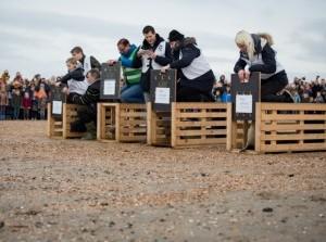 Geslaagde vrijlating zeehonden Sokje, Lilly, Lewis en Lizzie in Ouddorp