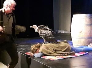 Roofvogelshow met Ruben van Maaren