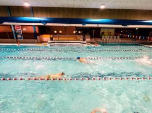 SRGO omarmt initiatief voor gratis C-zwemdiploma