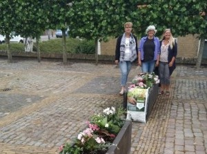 Dorpsraad Herkingen wil stappen zetten na akkoord door gemeenteraad