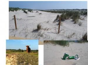 Landelijke handhavingsactie langs Nederlandse kust
