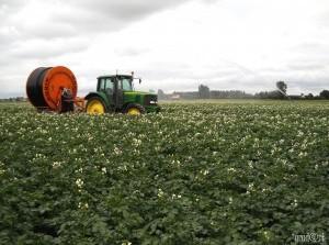 Agrariërs kunnen vanaf 2019 sneller compensatie aanvragen