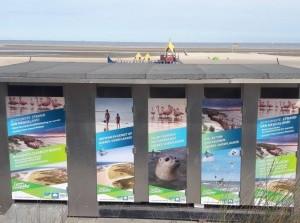 Stickers op toiletdeuren strandopgangen Ouddorp en Brouwersdam