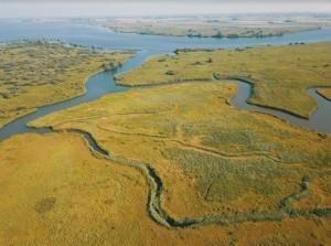 Op weg naar een gezonde delta (deel 2)