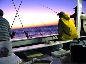 Visbakactie DEV in Stellendam