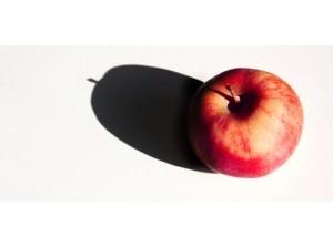 Boeren en tuinders delen appels uitzorginstellingenGoeree-Overflakkee