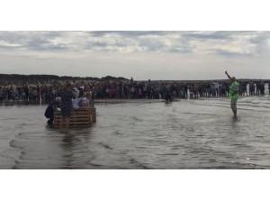 Filmpje: vrijlaten zeehond Ouddorp gaat verkeerd