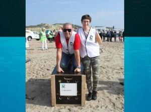 Geslaagde vrijlating zeehonden strand Ouddorp