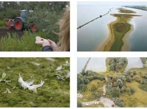 Video 'The making of' het reuzenei van het Haringvliet (Deel I)