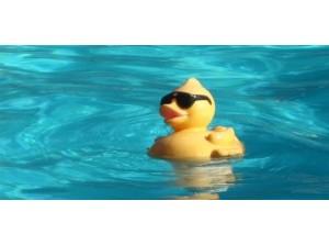 Nederlandse kampioenschappen zwemmen voor junioren jeugd
