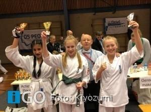 Prijzen voor Kiyozumi op Yujin Cup in Oude-Tonge