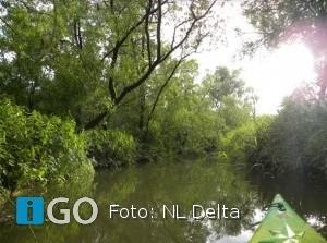 Provincies, natuurorganisaties en gemeente bekrachtigen samenwerking NLDelta