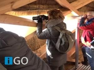 [video] Reuzenei Haringvliet maakt indruk op omwonenden tijdens 'sneak preview'
